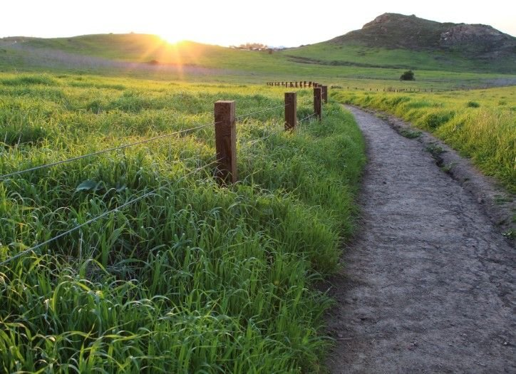 Sunset over a grassy path in rural Irvine, CA