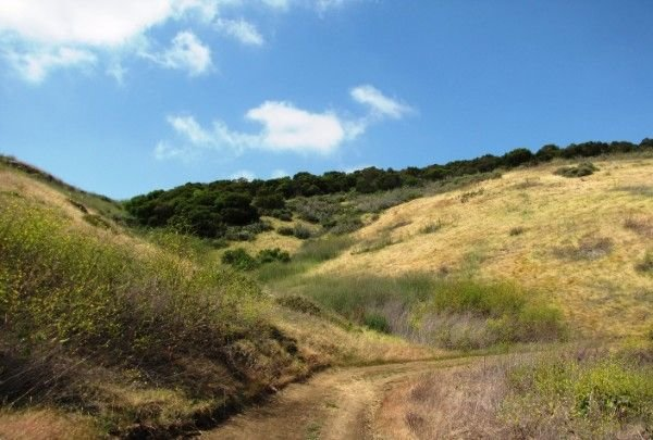 Hilly trail near Irvine, CA